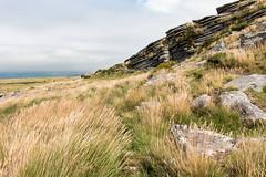 Belstone Tor, Dartmoor (Keith in Exeter) Tags: belstone tor rock hill dartmoor nationalpark grass landscape moorland outdoor devon