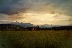 in the broad steppe... (Ola 竜) Tags: mountains grass meadow steppe green plants weeds nature sky clouds cloudy mountain mountainrange dark beforerain goldenhour sunset landscape