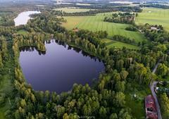 Pärsti ja Kuuni järv (BlizzardFoto) Tags: pärsti kuuni järv lake õhtu evening forest mets vesi water road tee viljandimaa droonifoto dronephotography aerofoto aerialphotography