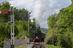 BR Standard 4MT 80146 approaches Corfe Castle on the 16.40 service from Norden to Swanage. Swanage Railway. 22 07 2017 (pnb511) Tags: train rails railway loco locomotive swanagerailway semaphore signals doubleactingsemaphore green trees steam engine