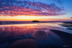 Beach Dreams (TeeJay_S) Tags: pnw pnwexplored oregon oregoncoast visitoregon exploreoregon nature outside outdoors sunset ocean pacificnorthwest pacific pacificocean adventure beautiful canon canon6d discover explore exploring getoutside ngc