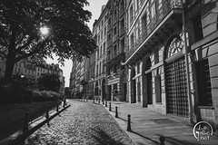 Place Dauphine - Paris - France (vlegallic) Tags: paris îledefrance france fr noiretblanc noir monochrome blackandwhite bw cobblestone street streetofparis nikon nikond610 tamron tamronsp2470mmf28divcusd tamron2470