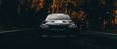 M2 Facelift (ozunalan) Tags: forza forzahorizon3 fh3 forzamotorsport forzahorizon black bmw beast bmwm bmwm2 m2 m2f87 mpower pc photography tree murdered forzamotorsports game gaming gg gamingphotography games gamephotography