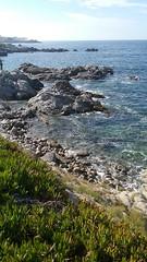 (sftrajan) Tags: pacificgrove california montereybay coastline pacificocean oceano