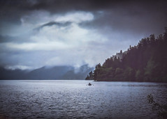 Solo (Colormaniac too - slowly catching up) Tags: mist misty rainyday mistyday travel boat lake nature landscape wilderness alone solo solitude lakecrescent olympicnationalpark olympicpeninsula washingtonstate pacificnorthwest topaztextureeffects