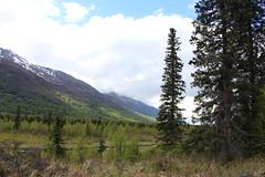 IMG_3582 (sevargmt) Tags: alaska 2017 chugach sate park eagle river valley may mountians