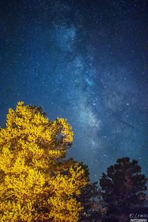 Interstellar postcard-Milky Way Above Baja California, La Rumorosa