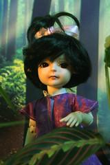 IMG_6653oki (Jaenea) Tags: legitbjd yosd bjd doll impldoll simon narise trees leaf