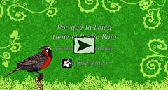 """Por qué la Loica tiene el Pecho Rojo • <a style=""""font-size:0.8em;"""" href=""""http://www.flickr.com/photos/126890823@N02/35861657230/"""" target=""""_blank"""">View on Flickr</a>"""