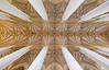 Church Ceiling (CoolMcFlash) Tags: symmetry symmetrie ceiling church column low angle view perspective munich germany canon eos 60d geometry geometrie lines symmetrisch decke kirche säule perspektive münchen deutschland fotografie photography sigma 1020mm 35 theatinerkirche