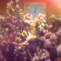 Nostalgic Flowers (sergiochubby) Tags: flowers soft clock time memory nostalgia light warm bouquet flower plant