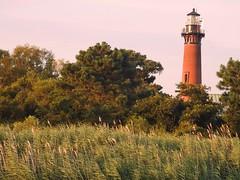 4826ex Currituck Beach Light (jjjj56cp) Tags: lighthouse currituckbeachlight corolla outerbanks nc northcarolina nationalregisterofhistoricplaces light seagrass seaoats coast coastal loblollypines p900 jennypansing