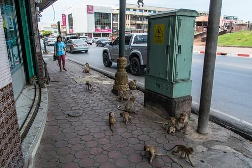 lopburi - thailande 3