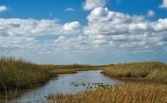 Everglades National Park (bmward_2000) Tags: hdr brook ward everglades national park florida landscape travel holiday vacation
