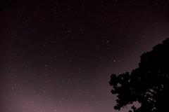 2683 (PhillipsVonNoog) Tags: astrophotography stars night sky stellar light pollution space