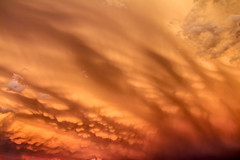 Sunset Mammatus Severe Storm (Dan's Storm Photos & Photography) Tags: thunderstorm thunderstorms thunderstormbase thunderhead thundershower skyscape skyscapes sky strongthunderstorm strongthunderstorms storm severethunderstorm severethunderstorms severestorm mammatus mammatusclouds mammatusdisplay sunset sunsets updraft updrafts weather wisconsin nature outdoors anvil anvils clouds cumulonimbus convection cumulus