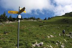 Wegweiser Windenpass (uwelino) Tags: switzerland swiss swisstravel swisstravelspectacular schweiz alpstein stgallen alpen alps 2017 europa europe wandern wegweiser