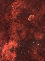Crescent Nebula in HaRGB (NGC6888) (Andrew Klinger) Tags: