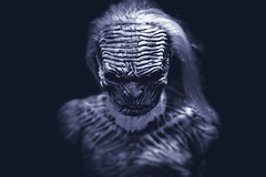 White Walker (62dingos) Tags: got gameofthrones whitewalker scary mask tvshow tvseries blue afraid dark haunting portrait fantasy fiction
