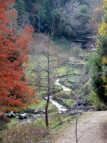 Short and Winding Creek