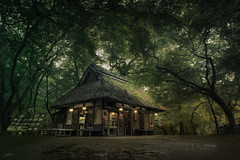 Old Tea House (ScottSimPhotography) Tags: tea house teahouse nara japan narapark green forest trees woods asian asia ancient enchanted mystical culture kyoto japanese scottsimphotography moody drama movie gameofthrones hobbit dark travel