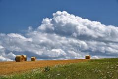 Les nuages...là-bas...les merveilleux nuages (Excalibur67) Tags: nikon d750 sigma 70200f28apoexdgoshsm nature nuages ciel cloud sky rundball campagne paysage landscape