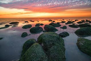 Hunstanton sunset with seaweed rocks in foreground, Norfolk, UK (2)