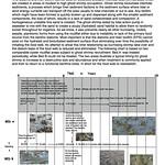 12 Ghost Shrimp distruption of habitat thumbnail