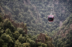 Ropeway pink (uhx72) Tags: thale harz germany nature forest ropeway seilbahn