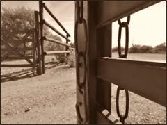 DSCN4265 (marialuz_fernandez) Tags: vallegrande mendoza argentina fence cerca tranquera nikon coolpix p900 sepia