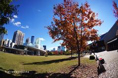 Atlanta, USA (Helio de Aquino1) Tags: