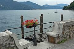 Seat for two @Cannobio (Vb) (frank28883) Tags: cannobio verbanocusioossola verbano lagomaggiore lakemaggiore lacmajeur langensee gerani geranio sedile sedili lungolago