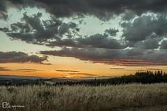 Toscana (M. Ángeles Cuenca) Tags: sunset atardecer toscana tuscany italy italia landscape paisaje colors colores cielo sky