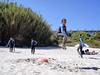 Txoko Surf Club Schola (Txoko Surf Club Schola) Tags: surf escueladesurftiempolibre surfschool beach playa vigo nigrán