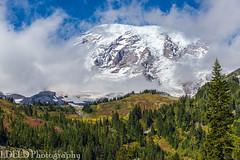 NT3.0057-MRNP160925_48754 (LDELD) Tags: mountrainier mountrainiernationalpark fall roadtoparadise washington paradisevalley mountain clouds