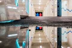 BLUE AND RED (James Stonley) Tags: auckland britomart reflection puddle rain after blue red nikon d750 mirror image street photography