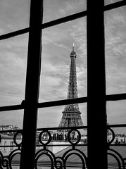 Eiffel tower (Alain Dutertre) Tags: monochrome contrast france window blackandwhite bnw streetphotography paris toureiffel eiffeltower