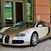 *NEW* Bugatti Veyron 16.4
