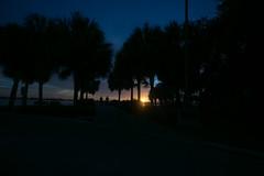 Jungle Prada Pier & Boat Ramp (CityofStPete) Tags: saint st petersburg pete florida fl fla stp burg city sun shines here sunshines sunshine tampa bay gulf coast 5d mark iv miv four 4 sunset silhouette tropic tropical reflections palm trees mexico salt water orange blue sky clouds