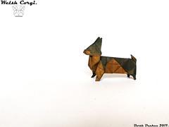 Welsh Corgi - Barth Dunkan. (Magic Fingaz) Tags: anjing barthdunkan chien chó dog hond hund köpek origami origamidog perro pies пас пес собака หมา 개 犬 狗