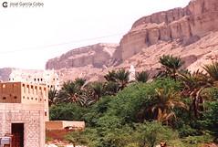 199909 Yemen Hadramaut (94) Seiyun (Nikobo3) Tags: asia orientemedio arábiga arabia penínsulaarábiga yemen hadramaut desierto desiertoramlatassabatayn culturas travel viajes fujicolorsuperia100iso película nikobo joségarcíacobo urban street nikon nikonf70 f70 sigma70300456 seiyun