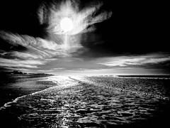 FaceSun.jpg (Klaus Ressmann) Tags: klaus ressmann omd em1 beach foleron landscape sun winter blackandwhite contrast darksky design flcnat sea klausressmann omdem1