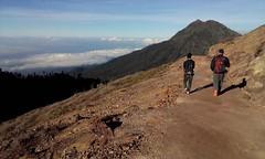 Return Journey (Canis lupus alba) Tags: kawah ijen kawahijen indonesia java licin banyuwangi volcano caldera cloud