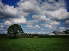Perfect Day (georgekells) Tags: trees countryside rural grass colour ulster northernireland sunnyday clouds fields