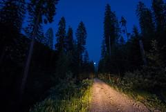 Velebit (Leonardo Đogaš) Tags: forest velebit đogaš leonardo hrvatska croatia moon blue