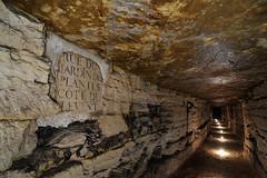 Rue du Jardin des Plantes Côté du Levant (flallier) Tags: paris souterrain carrière souterraine calcaire underground limestone quarry bougies candles plaque igc jardindesplantes côtédulevant galerie inspection