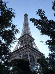 Eiffel Tower framed by trees (Muddy LaBoue) Tags: iledefrance monuments towers iconicarchitecture 1889 2017 july worldexposition eiffeltower paris france attractions tourism tower architecture