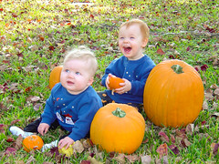 Pumpkins are Hilarious (gendarme02) Tags: daytime pumpkin kids infants fall 2003 wyattmartin sony cybershot dscp10 babies smile laugh smiling laughing blue green orange autumn