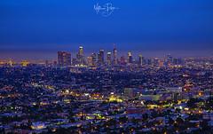 LA Lights (MatthewPerry) Tags: california losangeles los angeles hollywood beverly hills santa monica manhattan beach ocean sunset night