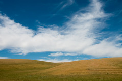 (miss_michelle) Tags: palouse scenery landscape green washington hills wheat spring